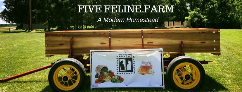 Five Feline Farm